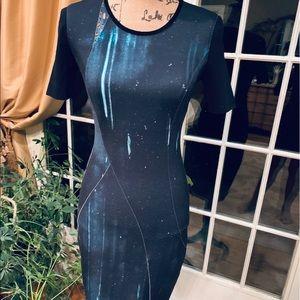 Elie Tahari dress.